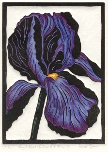 Forget About the Lilies of the Field-I-Purple-Hand colored