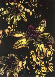 Wild Coneflower-Hand colored