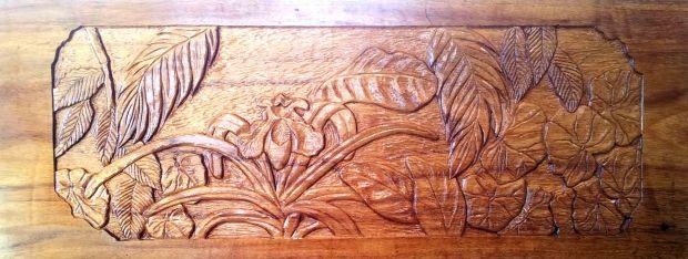 "14"" x 36"" panel on guanacasta"