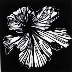 Black line hibiscus engraving