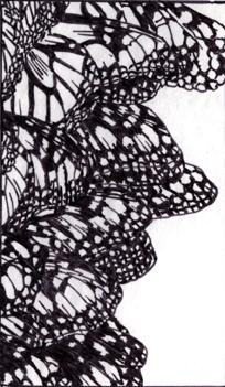 Morarch Grove-web