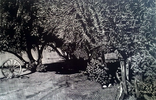 Old Olive Grove-web